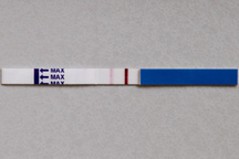 BFP Faint Line Pregnancy Test