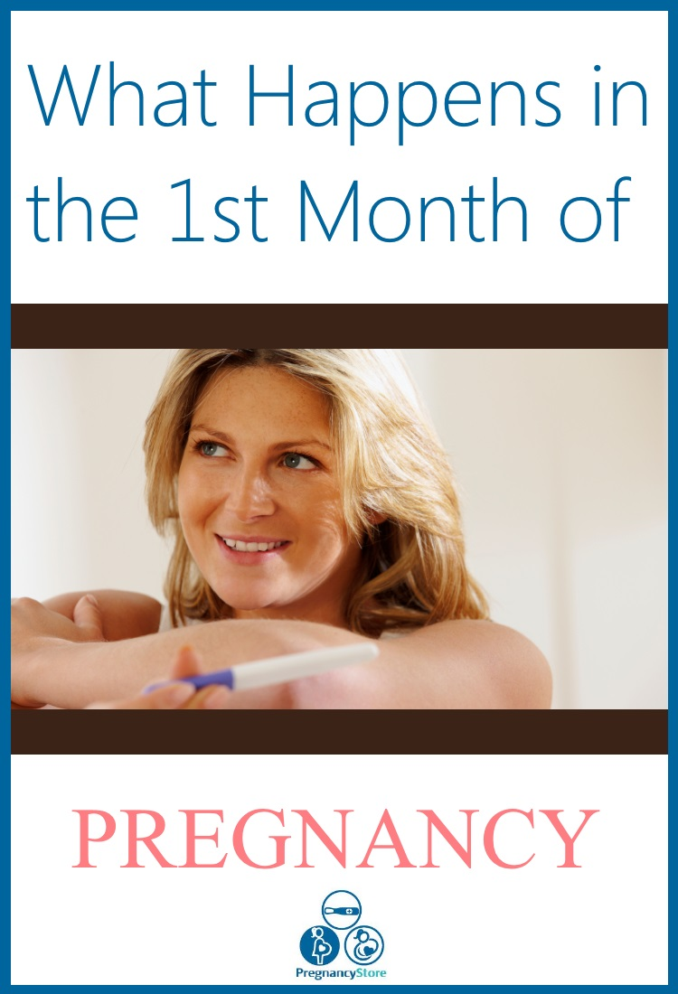 what happens in the first month of pregnancy