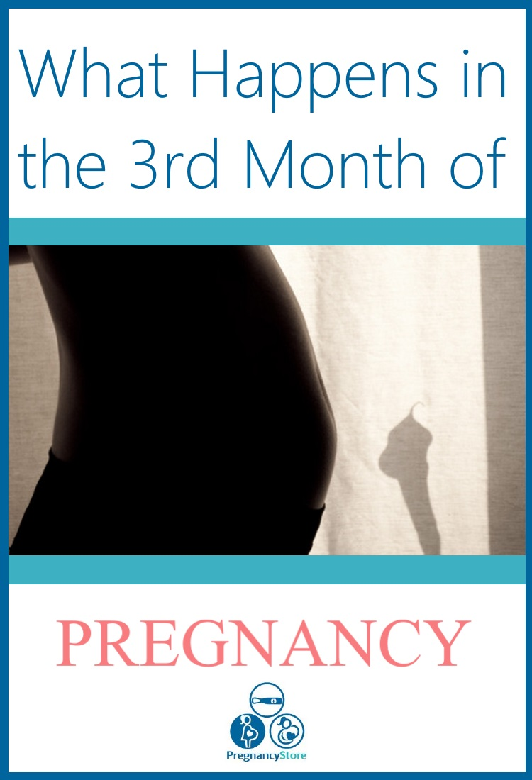 what happens in the third month of pregnancy